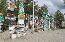 Удивительный канадский лес, где находится около 90 тысяч дорожных знаков