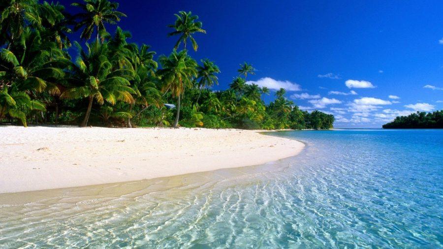 Отдых на красивом пляже
