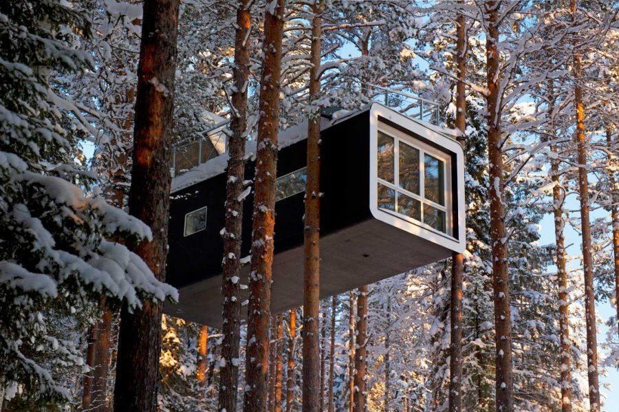 Отель Дом на дереве (Швеция)