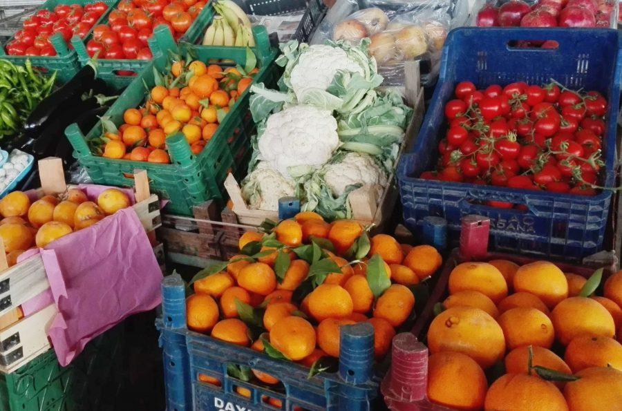 Вегетарианство и отдых в Турции
