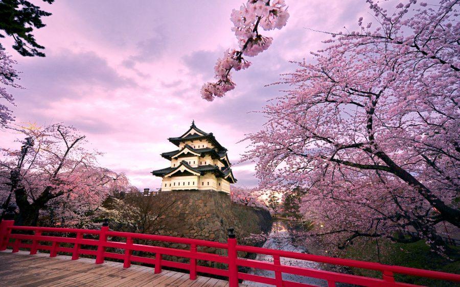 Япония для путешественниц
