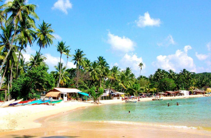 Шри-Ланка для отдыха зимой