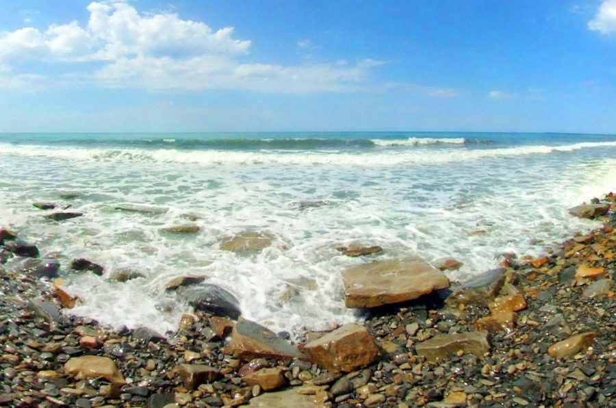 Опасности в морской воде