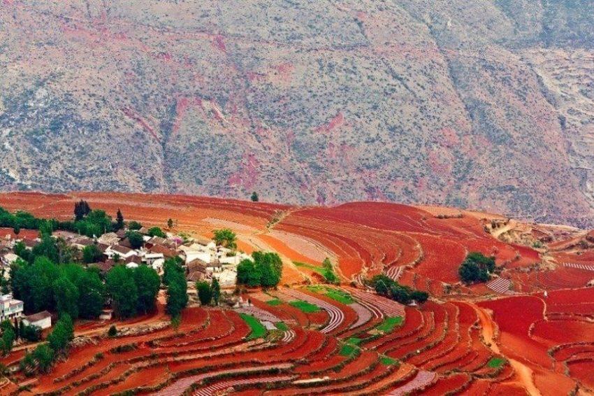 Красные террасовые поля, Китай