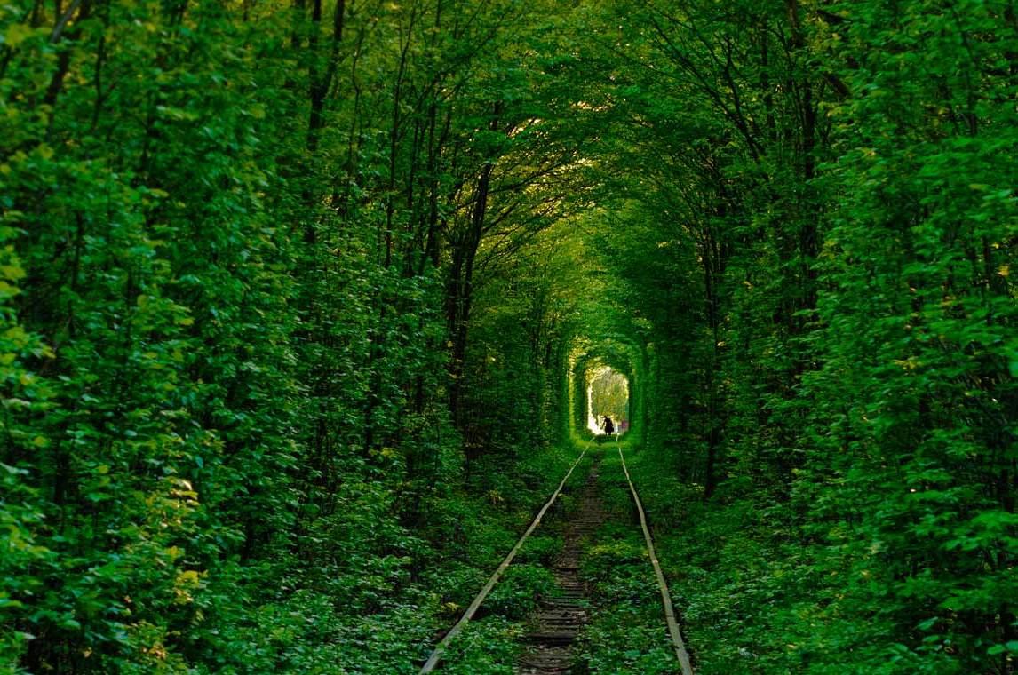 Зеленый Тоннель любви, Украина