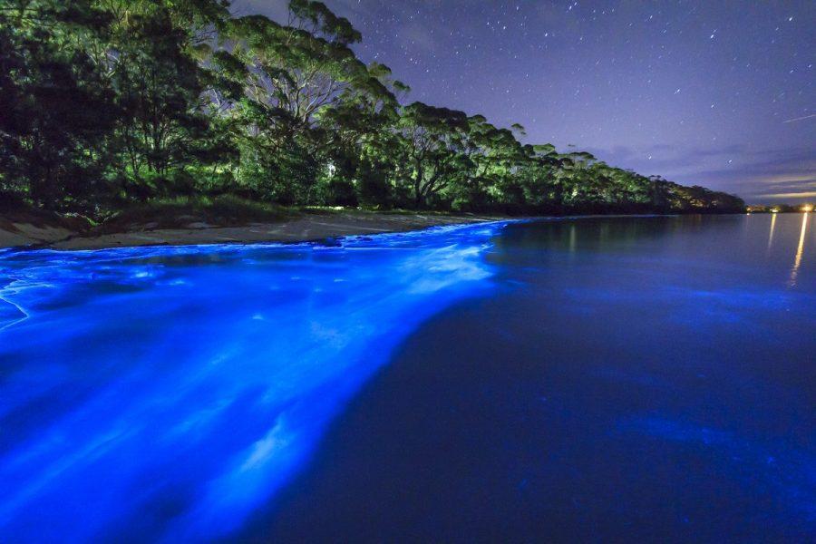 Биолюминесцентное озеро, Мальдивы