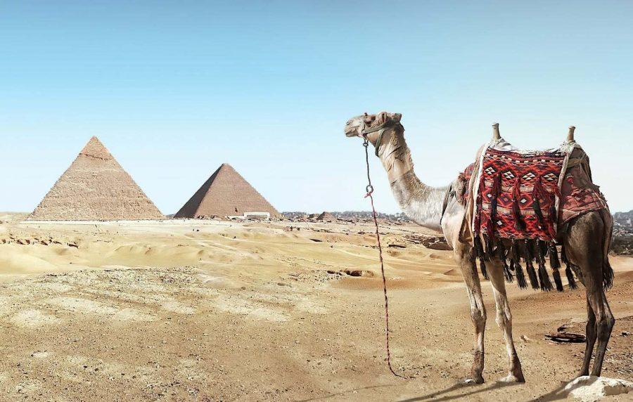 Летом не стоит посещать Египет