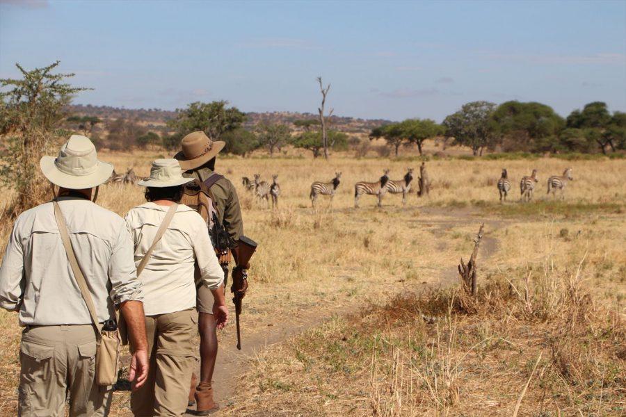 Пешеходное сафари в Танзании