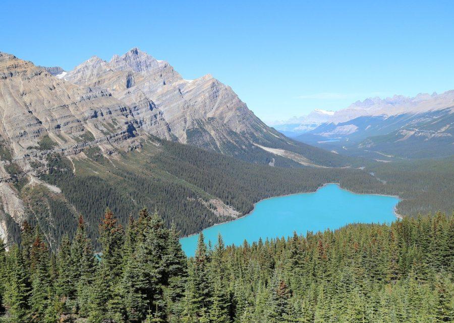 Бирюзовое озеро Пейто в Канаде