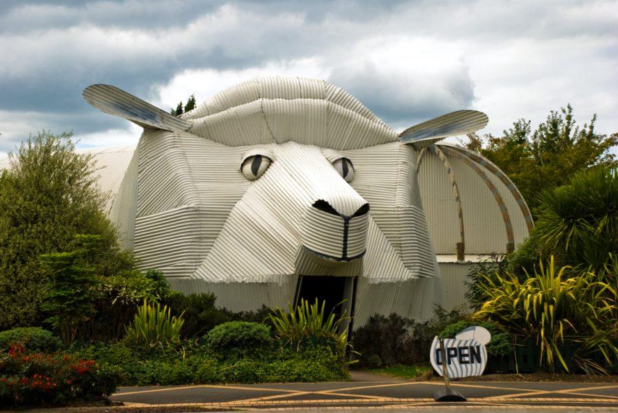 Дом-овца в Тирау (Новая Зеландия)