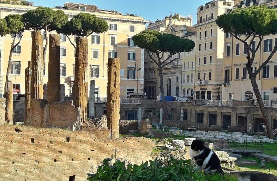Площадь Торре Арджентина в Италии