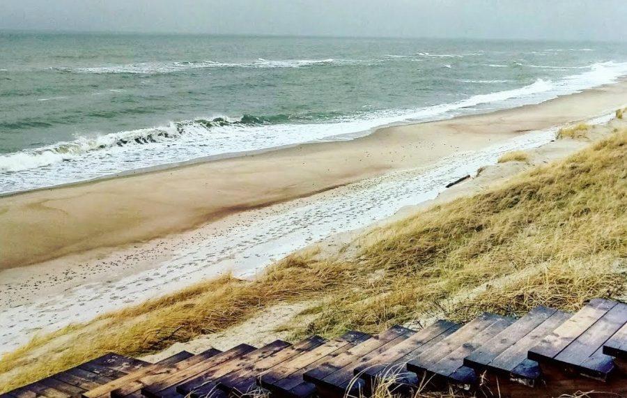 Куршская коса на Балтийском море, Калининградская область