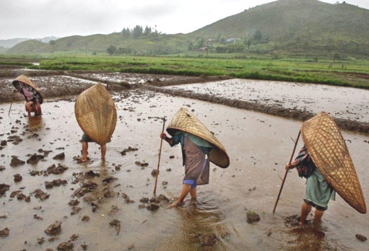Дождливое место в мире, город Маусинрам в Индии