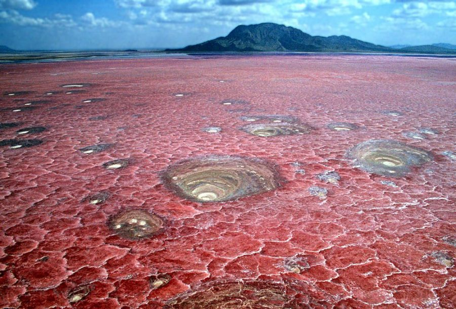 Натрон – озеро смерти в Танзании