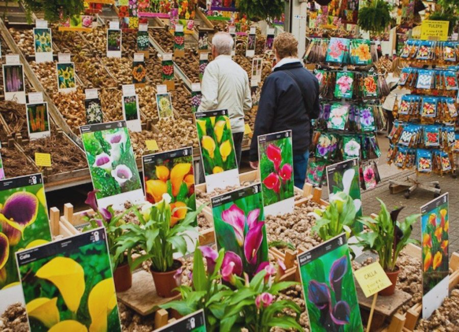 Рынок Блуменмаркт с цветами