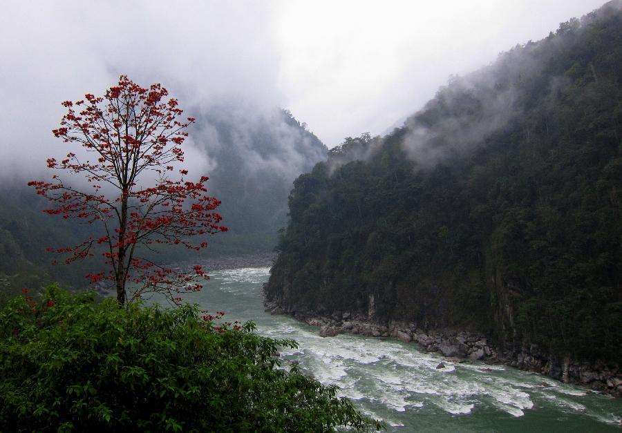 Округ Медог на территории Тибетской автономии