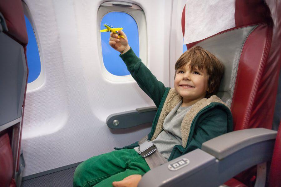 Пассажиры с детьми в самолете
