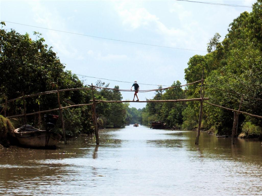 Обезьяньи мосты (Вьетнам)