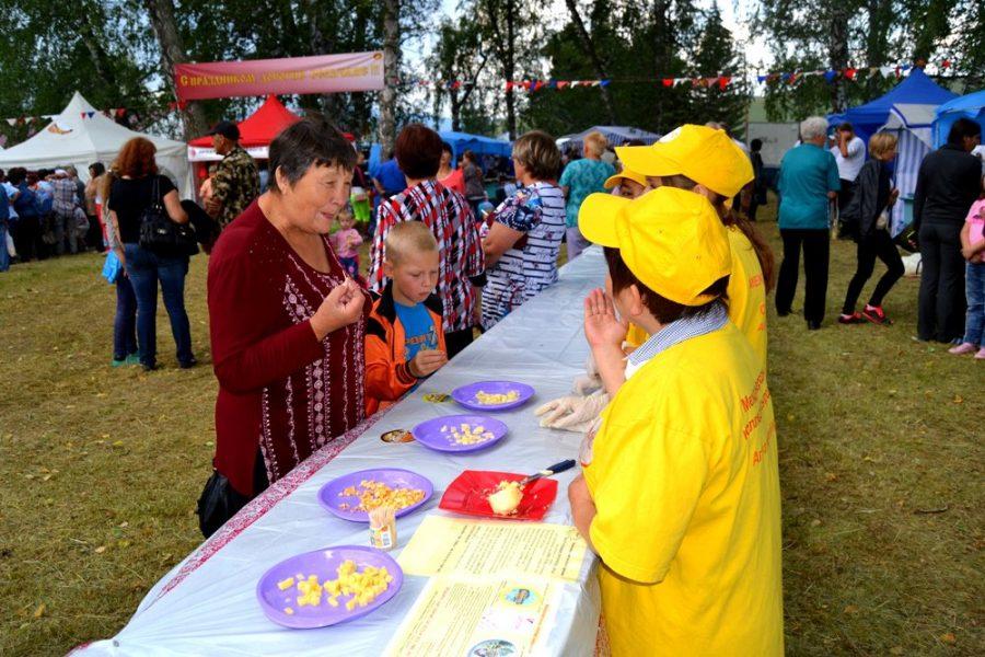 Фестиваль Сырная деревня
