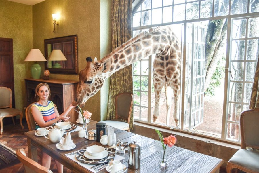 Ресторан Giraffe Manor в Найроби
