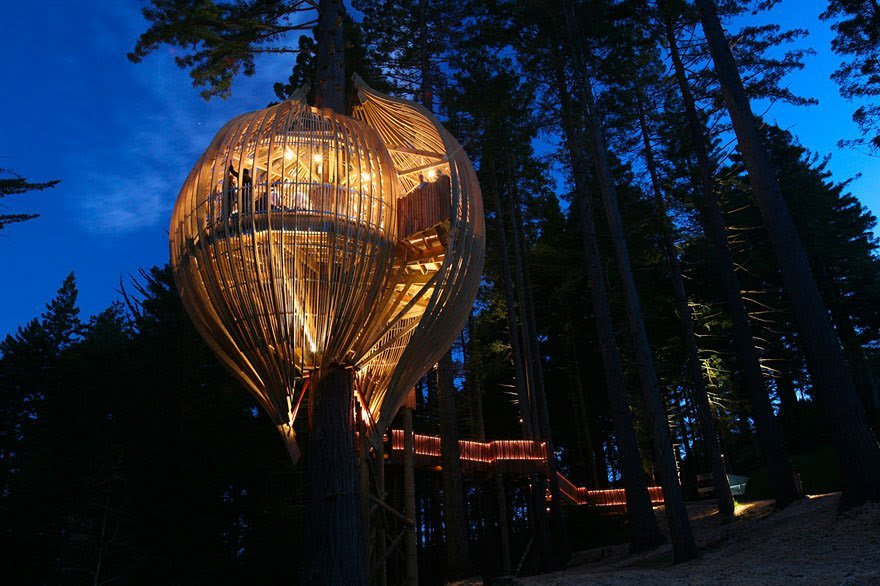 Ресторан на дереве в Новой Зеландии