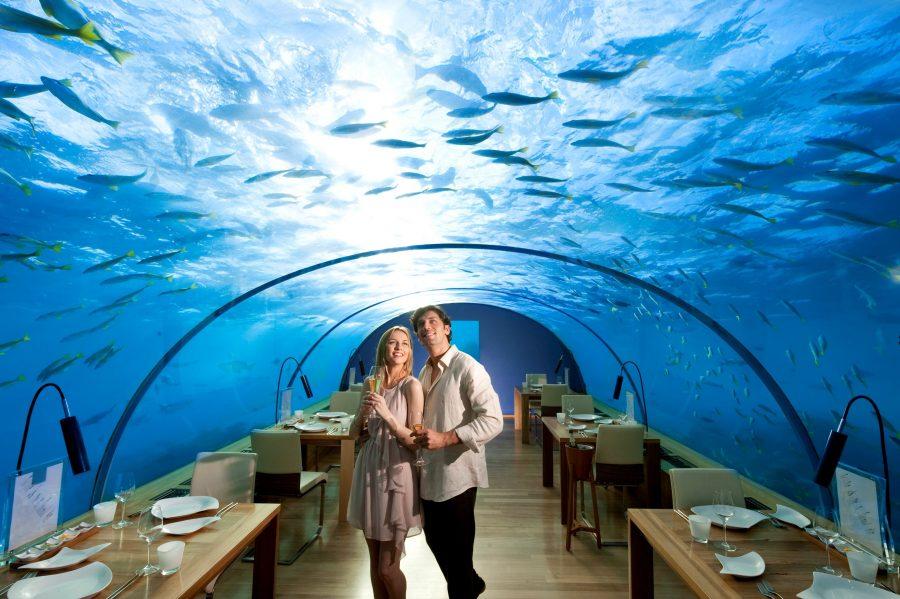 Ithaa ресторан под водой на Мальдивах