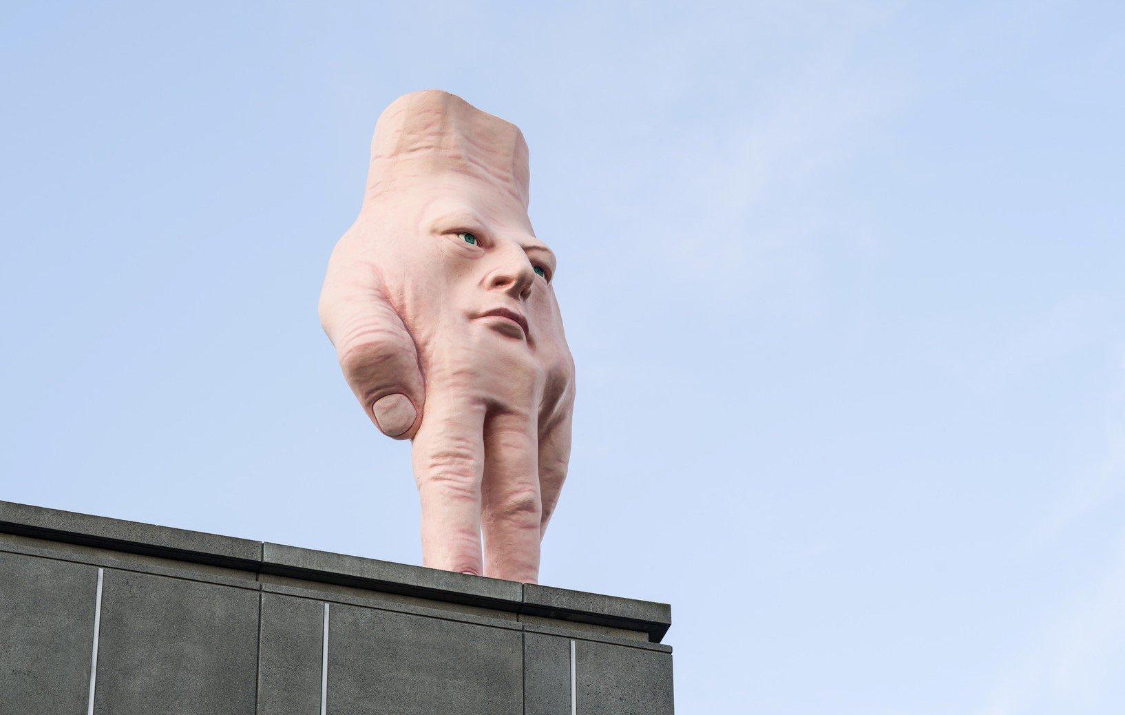 Рука-лицо «Квази», Новая Зеландия