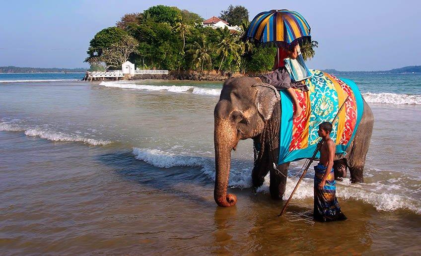 Поехать в Индию без знания английского