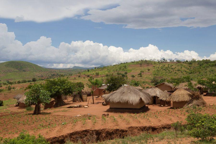 Проживание на территории Африки