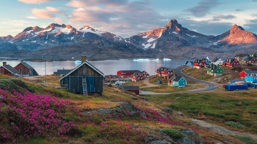 В Гренландии не много растений