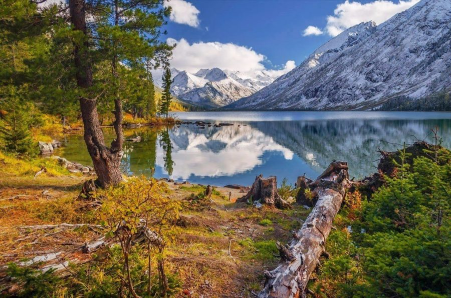Алтай в России похож на Швейцарию