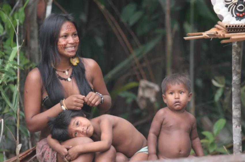 Пираха дикое племя в современном мире
