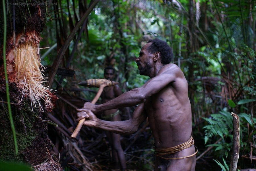 Караваи дикое племя в современном мире