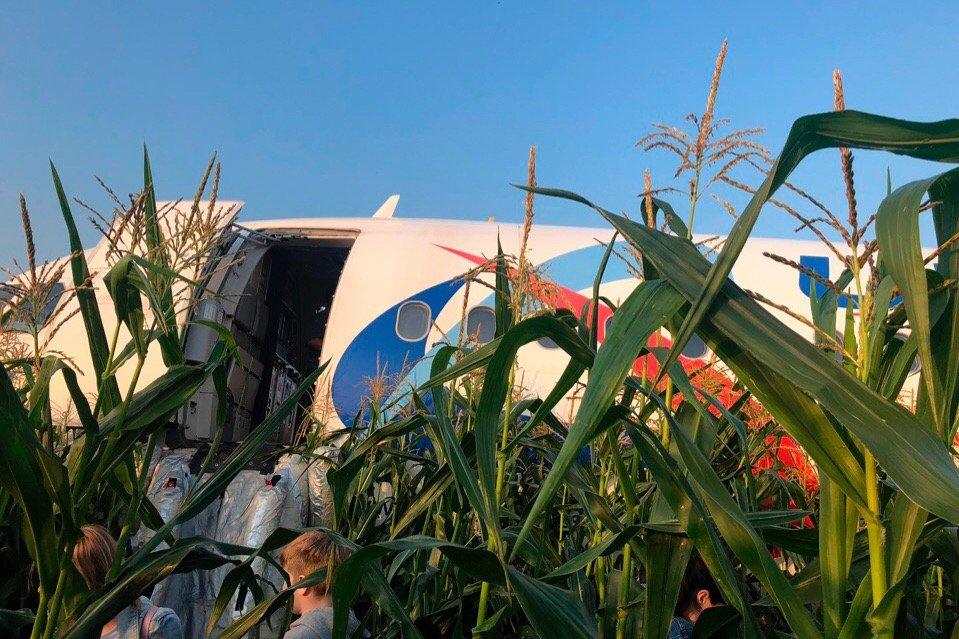 Пассажирский самолет аварийно сел в поле в Подмосковье