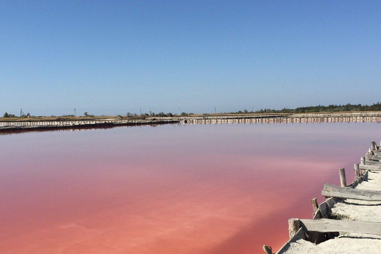 Розовое озеро в Херсонской области