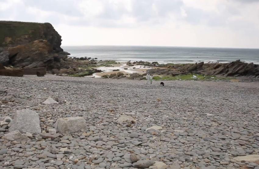 Галька с пляжа графства Корнуолл