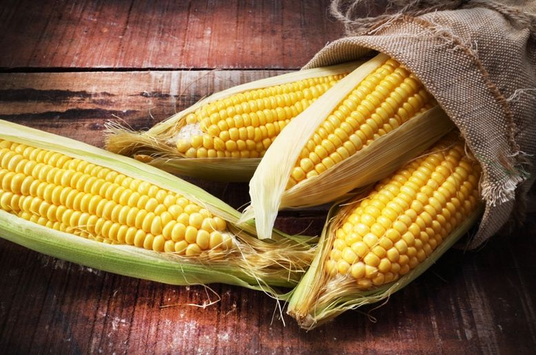 Кукуруза традиционное блюдо в Мексике