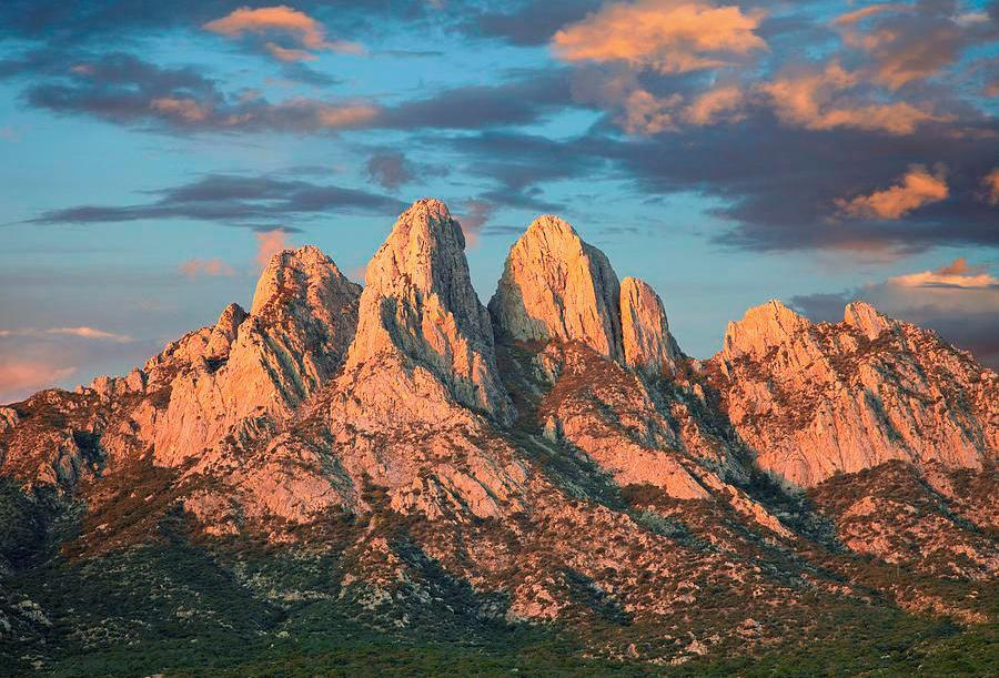 Органные горы Нью-Мексико
