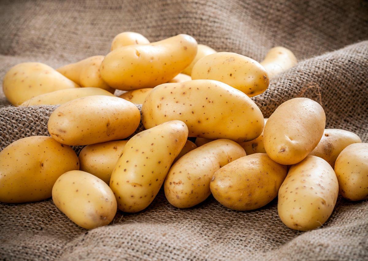 Картофель выращенный в Турции
