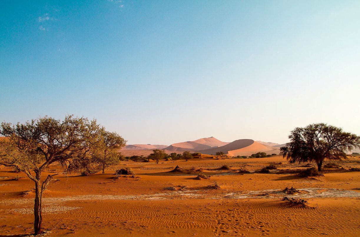 Национальный парк Намиб-Науклуфт, Намибия