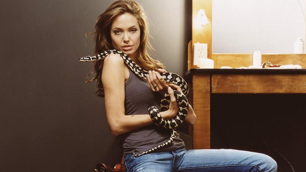 Змея – защита Джоли
