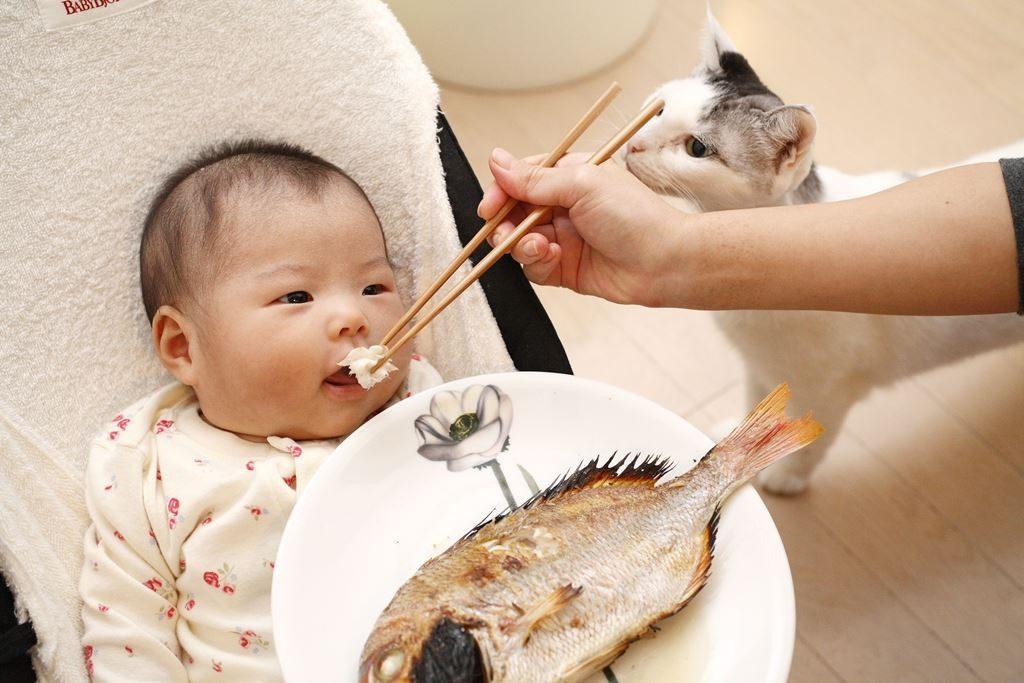 В Азии с детства кормят морепродуктами