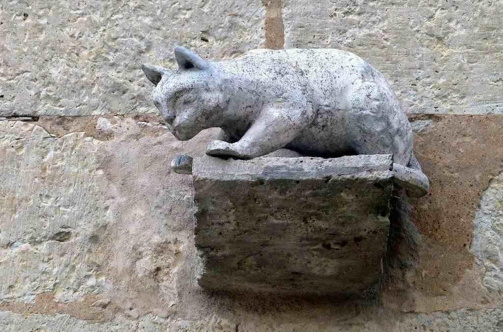 Коты, которые спасли французскую деревню