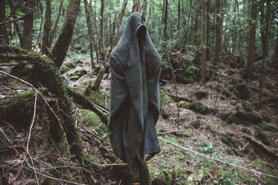 пугающий лес с призраком
