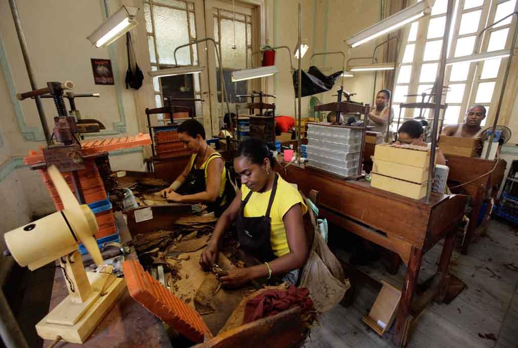 Как изготовляют кубинские сигары