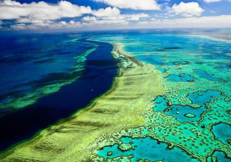 Большой Барьерный риф: уникальный уголок природы