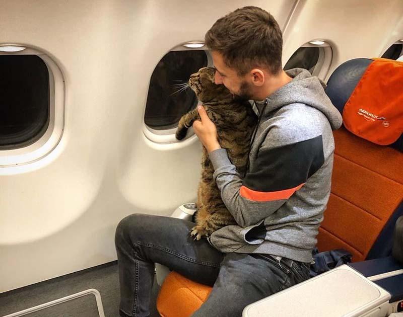 Михаил отправился в салон самолета с Виктором.