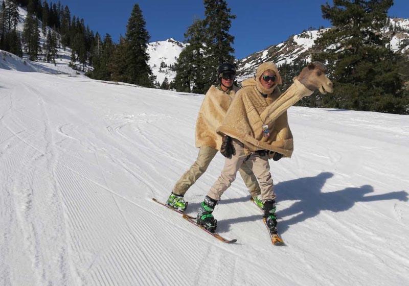 Где можно кататься на лыжах в любое время года