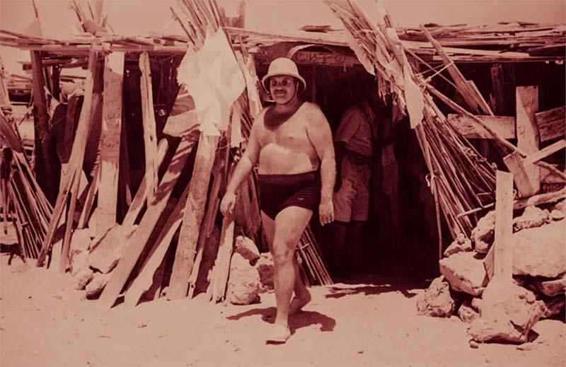 Размеры желудка правителя Египта Фарука
