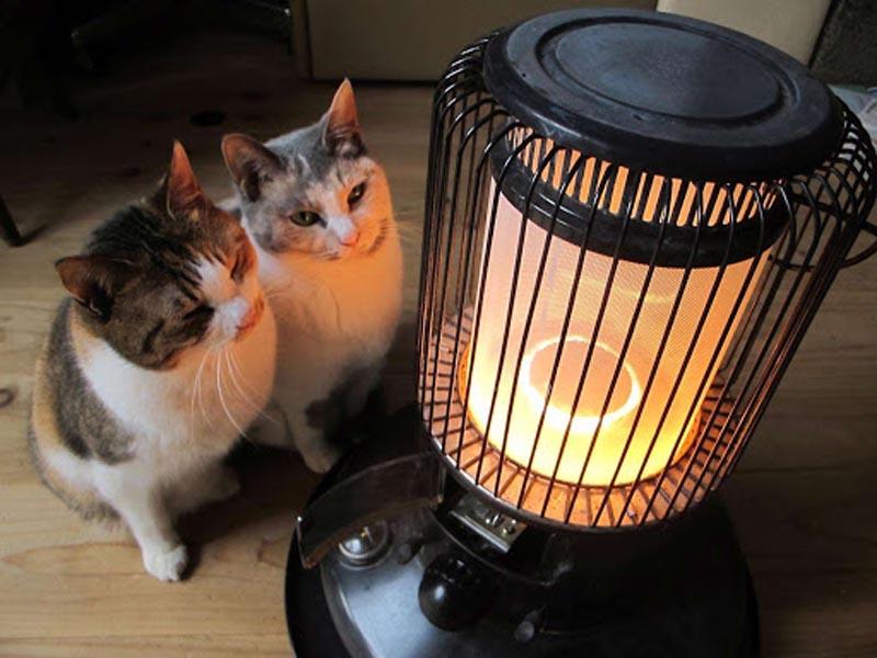 Почему холодно в японских домах